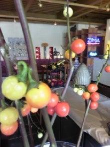 HAPPY&ENJOY primecafe ~ 甲子園 プライムカフェ-TS3U0301.jpg