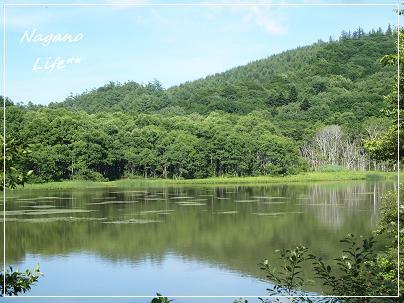 Nagano Life**-鏡池
