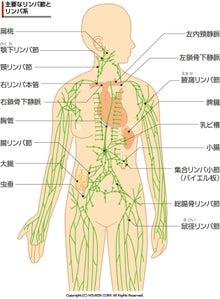 救急医の挑戦 in 宮崎
