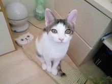PFL★MIKIのブログ-2012082212530000.jpg
