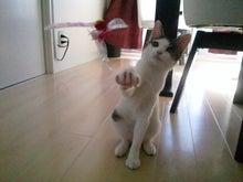 PFL★MIKIのブログ-2012082314130000.jpg