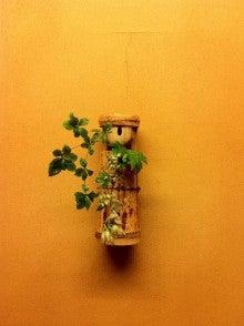 Blog 壷中日月長-20120822茶花