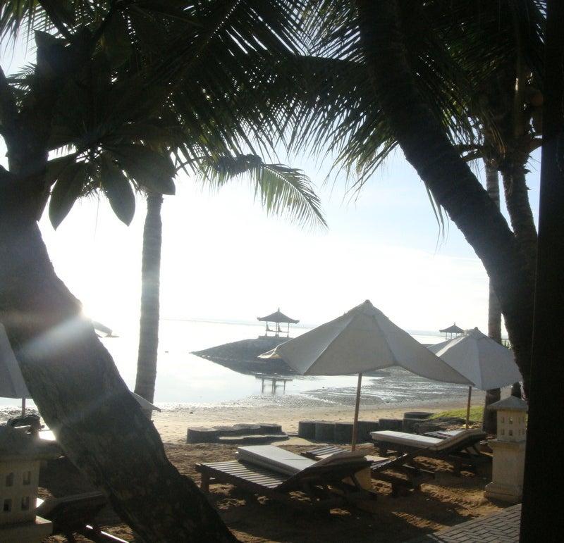 バリ島の朝・・・☆