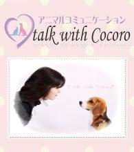 アニマルコミュニケーション talk with Cocoro