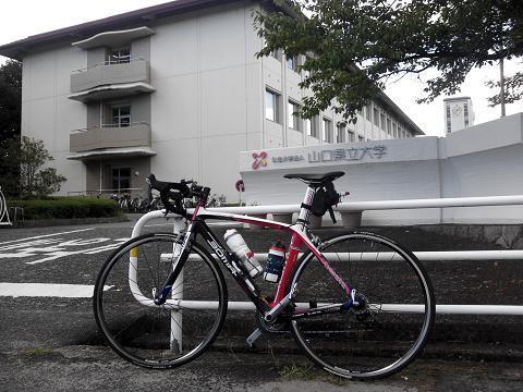 お気楽自転車生活-県大前