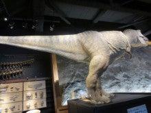とやま定住コンシェルジュ 3代目のブログ-映画で人気のティラノザウルス