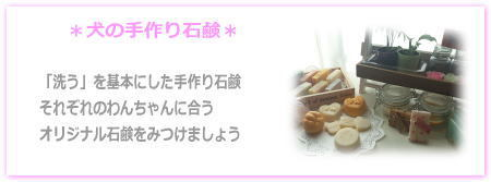 $Wan's Palのブログ