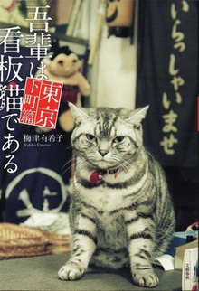 $CLOSED GARDEn 〜 + 1 〜