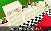 DOGPLEX NEWS