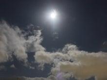 自分を大切にできる育自講座 福岡 カウンセリング セミナー講師 企業研修 育児 心理テスト 木の絵-月の光