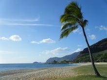 My Ameba Debut Hawaii Lifestyle Living Aloha...