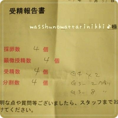 マッシュのまったり日記♪ ~可愛くて楽しいシュナマルな日々をダラダラ綴っちゃってます(*´д`*)b