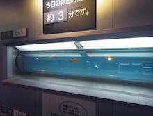 日本一周 友達づくり-13