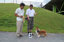 Handler's Group G7