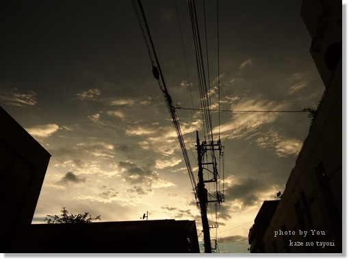 詩・画像詩ブログ【そのままで ~風の便り~】-いたいから