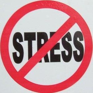 Dr.Oz 自然療法専門医のひとりごと。-ストレス