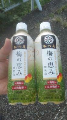 日刊TOMY-梅の恵み.jpg