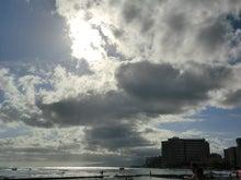 大垣雨猫のブログ