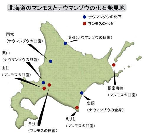 川崎悟司 オフィシャルブログ 古世界の住人 Powered by Ameba-北海道で発見された象化石