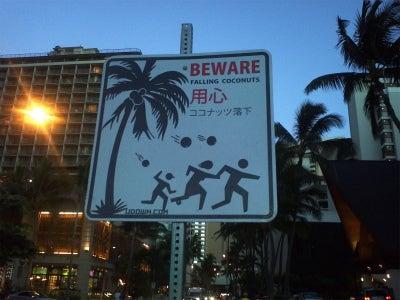 ハワイ好き❤カイナハレ・ハワイよりハワイ 宿泊❤コンドミニアム❤ 邸宅情報