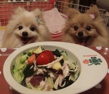 $【大阪・神戸】ペットに手作り食倶楽部 ★ 阪神間でペット食育講座-Wポテサラ1