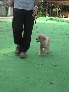 tpdogのブログ-120922_1416~0006.jpg