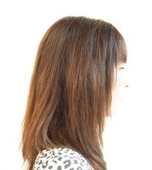 Shin's Blog-テスト開始時の毛髪の状態