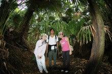 小笠原のエコツアー 小笠原旅行 小笠原観光 小笠原の情報と自然を紹介します-9.25