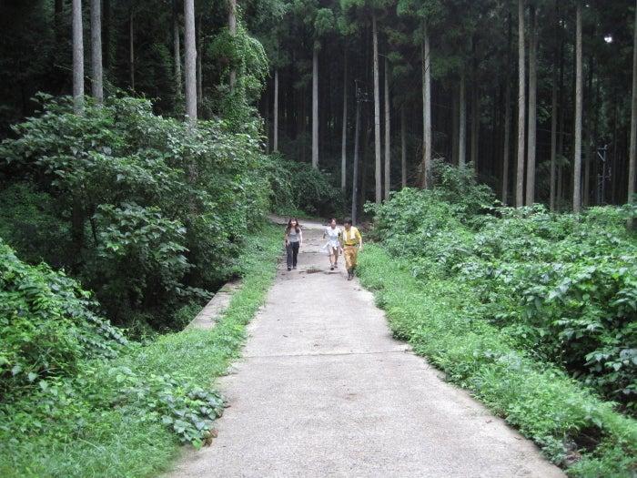 歩き人ふみの徒歩世界旅行 日本・台湾編-雲海を見に