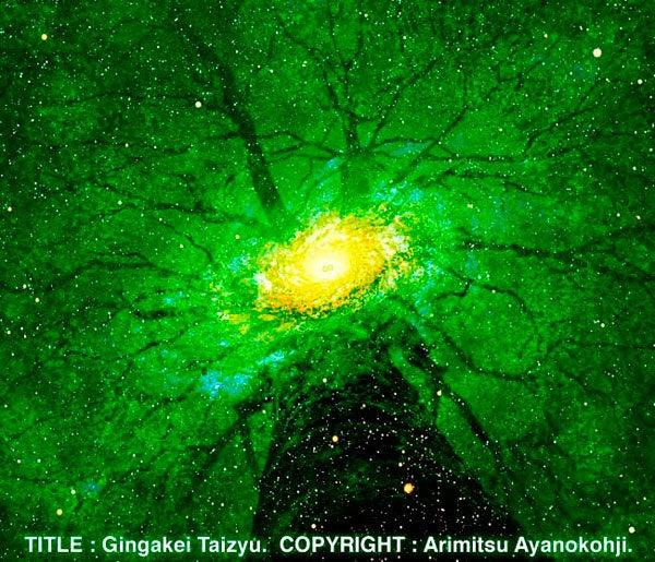銀河系大樹