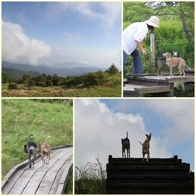 うぉっか★てきーら へべれけ生活-美ヶ原ハイキング