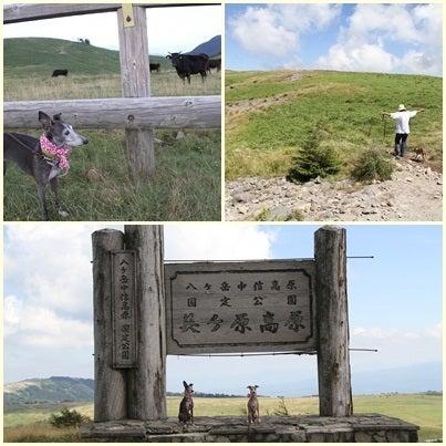 うぉっか★てきーら へべれけ生活-美ヶ原ハイキング2