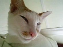 PFL★MIKIのブログ-2012093011450000.jpg