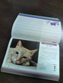 麦ももの しまんと ニュース(日記?)-20121001174821.jpg