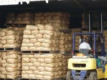小島米店のブログ-正に収穫時期、ぞくぞくと新米が・・