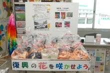 $福島県在住ライターが綴る あんなこと こんなこと-20121005浜風商店街