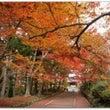 今日20日から秋の土…