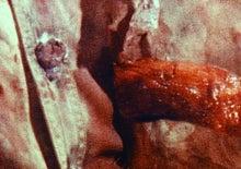 地獄の血みどろマッスルビルダー-46