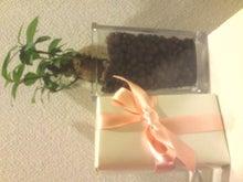 shihoさんのブログ