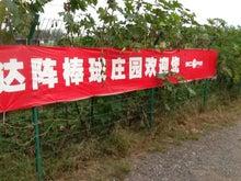 とよっちと中国の野球少年ものがたり