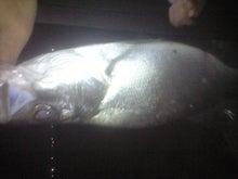 釣り人の日記-CA390890.JPG