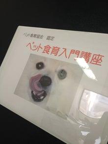 $【大阪・神戸】ペットに手作り食倶楽部 ★ 阪神間でペット食育講座-入門8