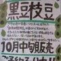 京丹波 黒豆枝豆