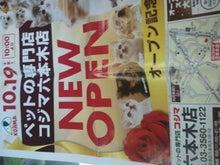 もっと☆POPCORNING!!-2012-10-19 13.08.48.jpg2012-10-19 13.08.48.jpg