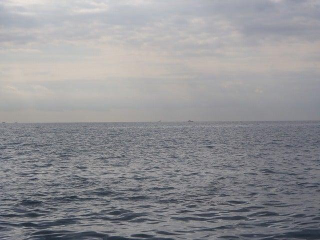 やんふぁのブログ-相模湾