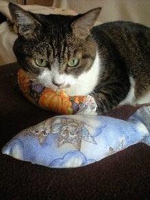 ずれずれブログ…湘南で猫と暮らせば…-121020_1010~0001.jpg