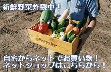 産直!オーガニックな無農薬野菜の八百屋yaotomi,名古屋今池駅徒歩8分,野菜宅配