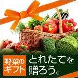 $トピックス-おいしい野菜を送ろう!