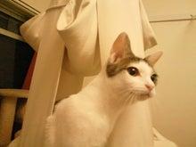 PFL★MIKIのブログ-2012102023160000.jpg