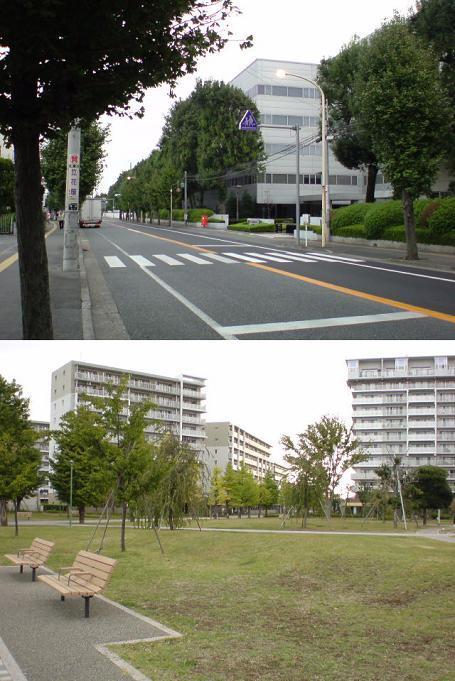 街や交通網の盛衰を記録する....警「美」報 告 書 ☆彡   ▼CAMMIYA-上福岡121028118